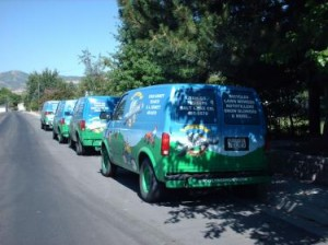 Blue and green vans lined up behind each other on a road